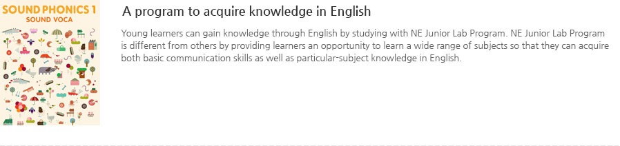 A program to acquire knowledge in English